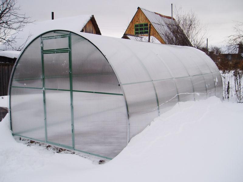 Как ухаживать за поликарбонатной теплицей зимой