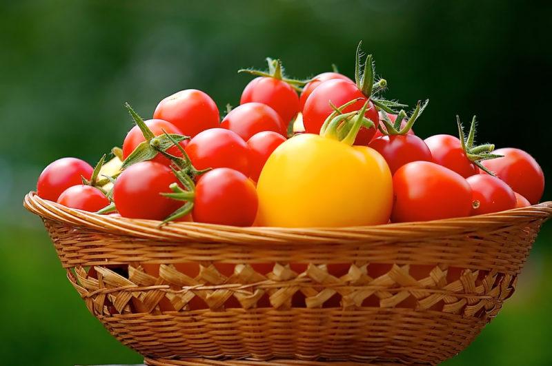 Как сделать так, чтобы помидоры созрели быстрее