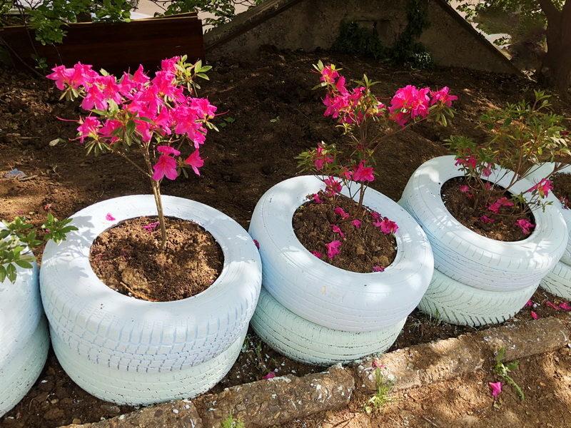 Идеи для уютного сада