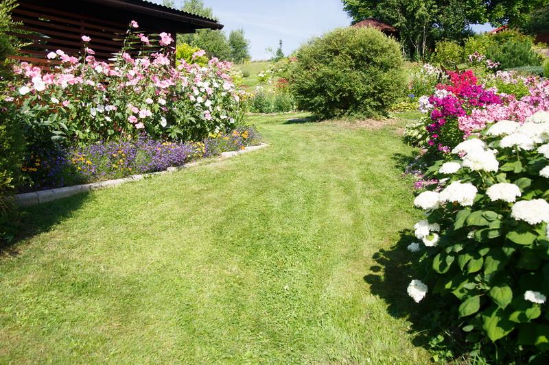 Как создать клумбу непрерывного цветения — варианты размещения цветников на садовом участке с примерами подходящих растений