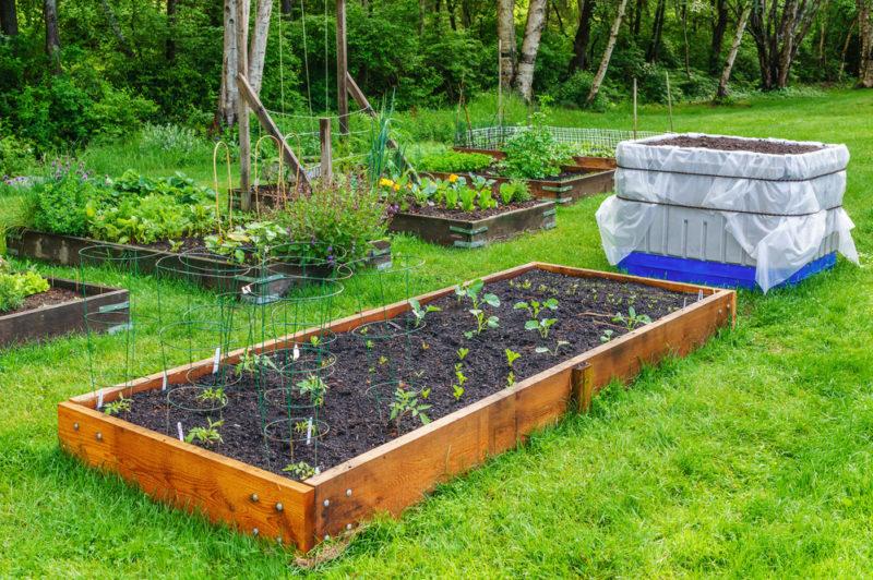 Высокие грядки — залог удобства, чистоты и урожайности, как соорудить их быстро и эффективно?