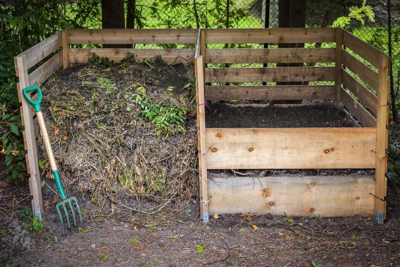 Подготовка сада к весне, что нужно знать