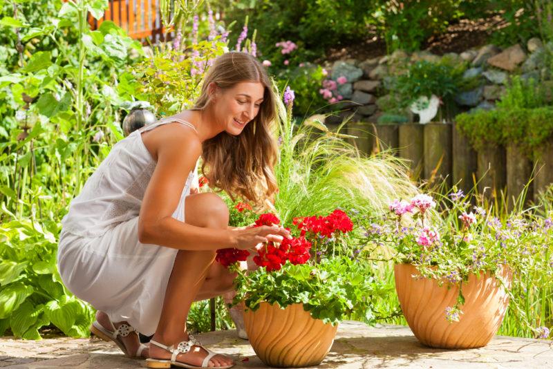 5 дел в саду, которые обязательно надо успеть в мае