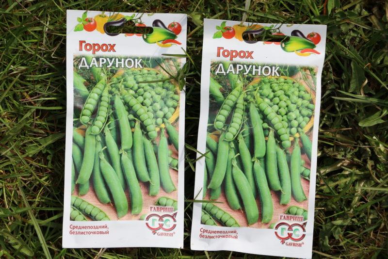 Когда сеять семена на рассаду холодной весной: сроки, требования к освещению и грунту