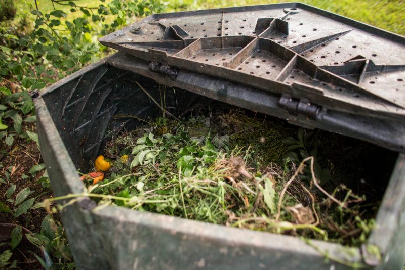 5 правил удачного компостирования
