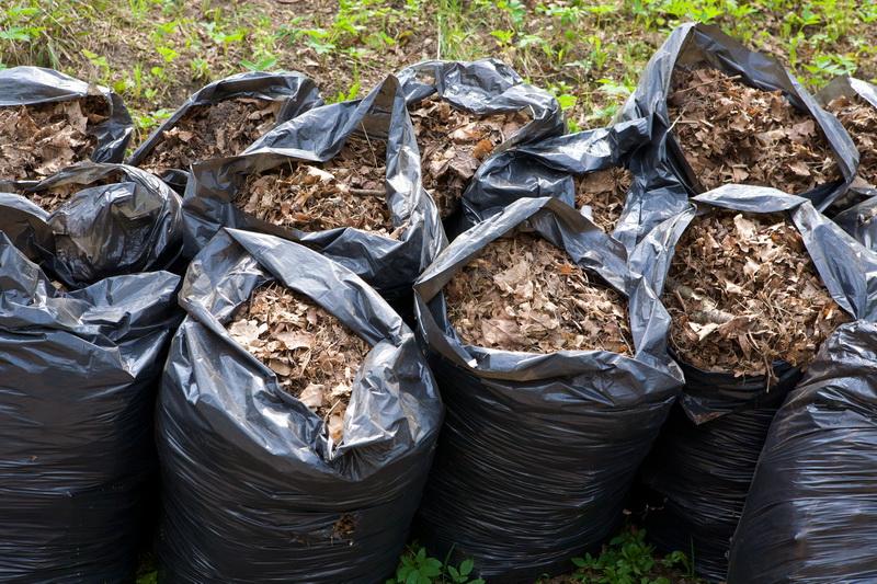 Какое применение можно найти для опавших листьев