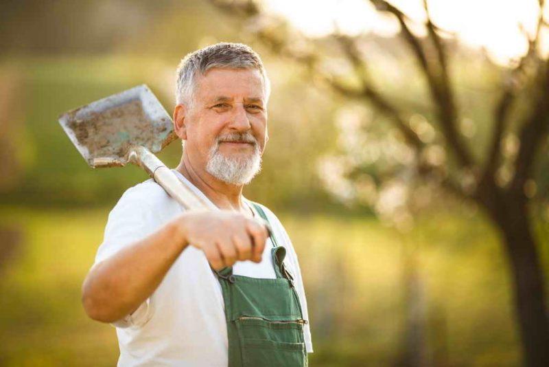 Копать или не копать: плюсы и минусы осенней перекопки