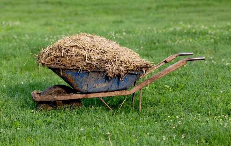 Богатый урожай без частых поливов и сорняков: быстрая и простая техника