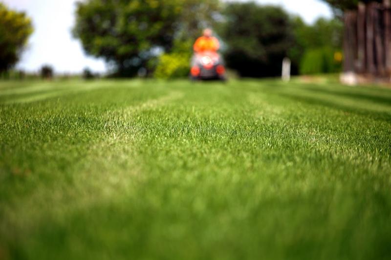 «Десять заповедей» для стрижки газона