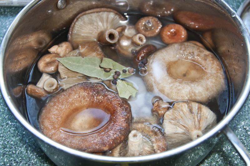 Способы засолки грибов на зиму