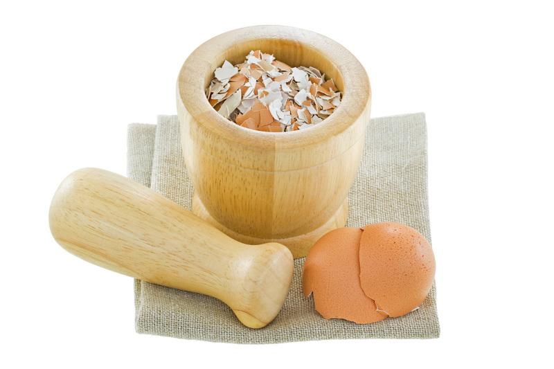 Очень эффективная и полезная яичная скорлупа. Готовим удобрения правильно