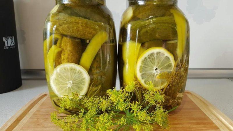 Лимон вместо уксуса: 6 лучших рецептов любимых маринованных огурчиков