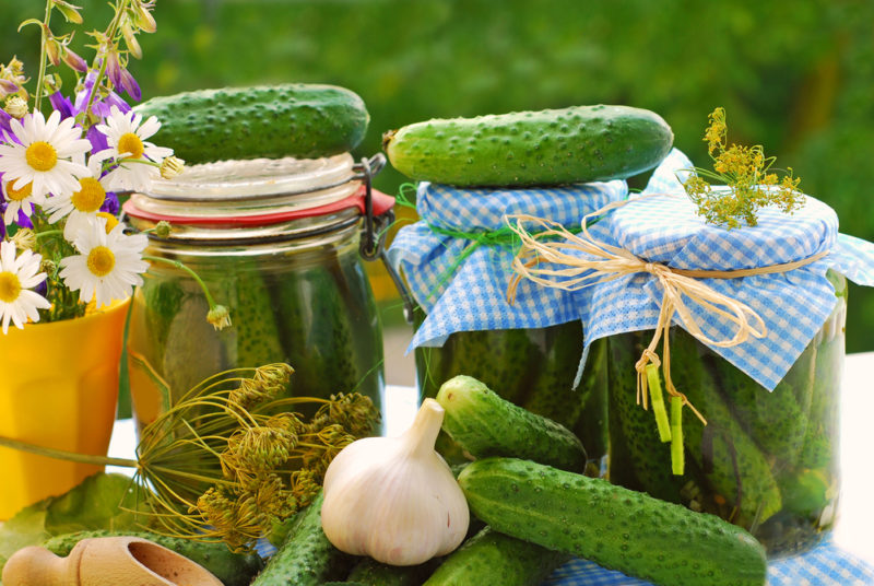 Готовим консервированные огурцы с водкой: вкусные рецепты и полезные советы