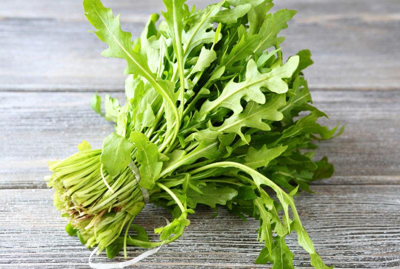Как я выращиваю пряную и ароматную рукколу на своем огороде — моя любимая «травка» для салатов и оригинальных блюд